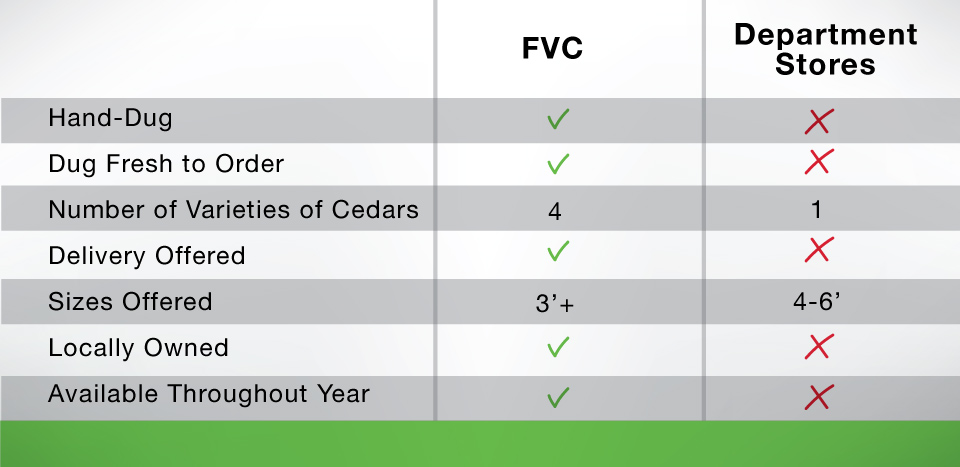 FVC-comparison